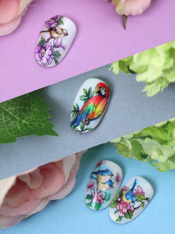 Nailcrust Pattern Slider #38 Birds
